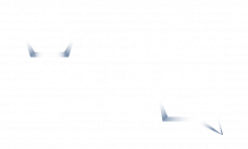 ACS Carbohydrate